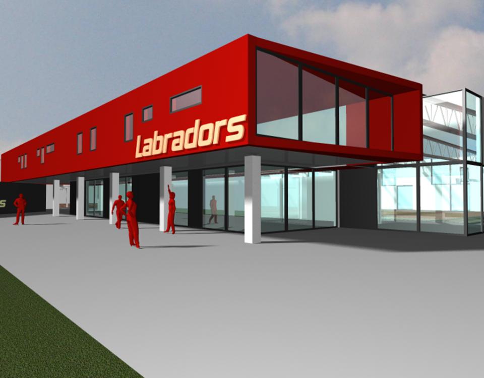 Labradors 0